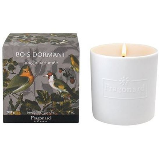 Imagine a Bois Dormant Lumanare parfumata 200g