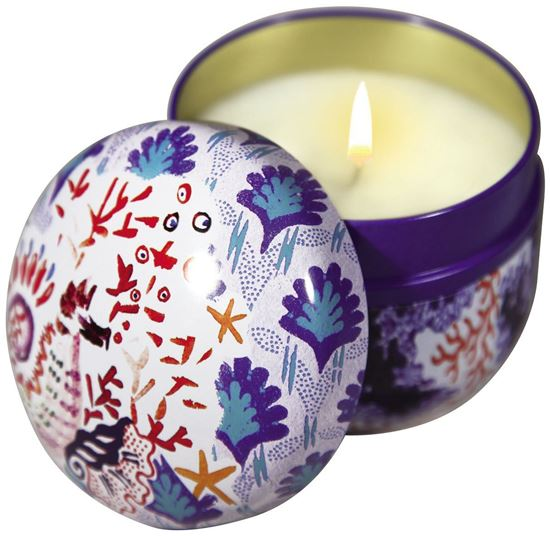 Imagine a Menthe Basilic Lumanare parfumata 200g